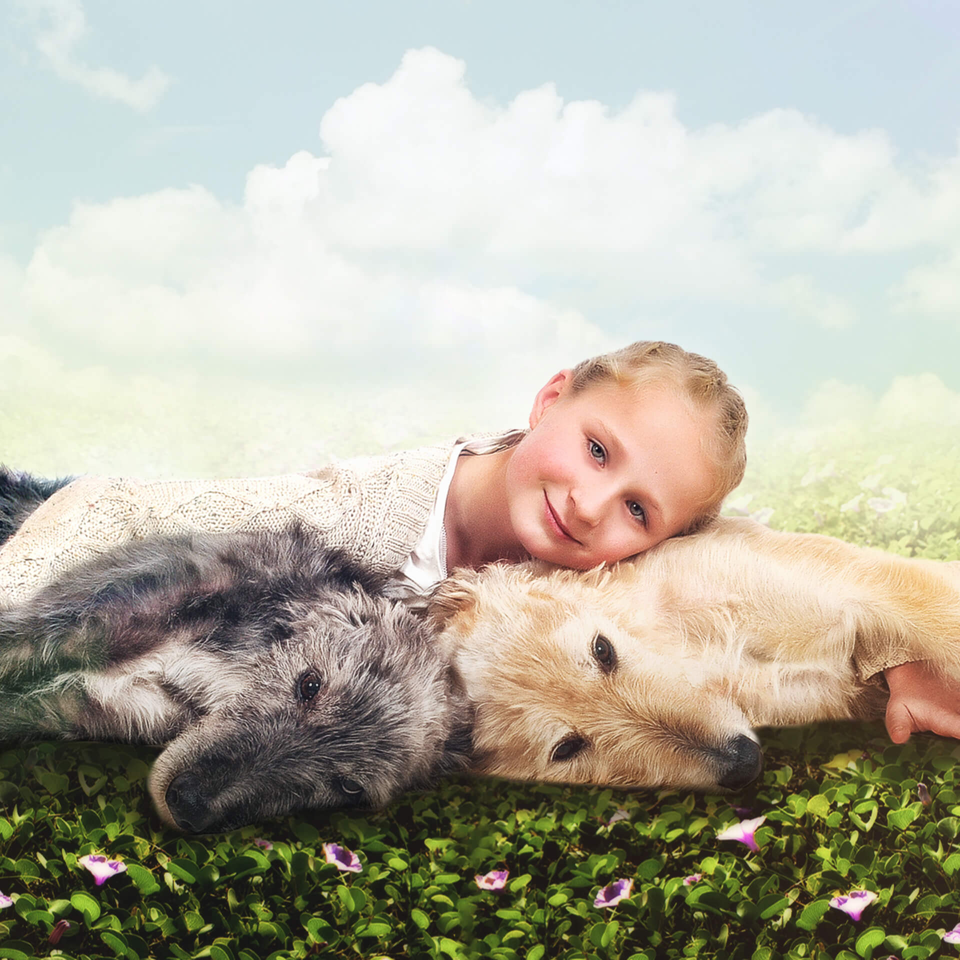 kids and pets photoshoot northampton kline studios